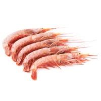 南大西洋纯净海域野生海捕船冻阿根廷红虾(10-20只/公斤)500g装