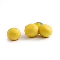 安心优选象山桔柚4个装