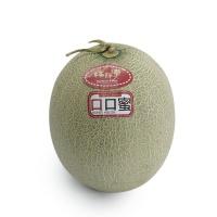 林师傅口口蜜甜瓜(单果1.2kg+)