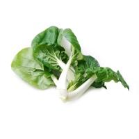 春播农庄有机栽培奶白菜300g