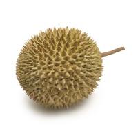 泰国尖竹汶府托曼尼榴莲(1.5-2kg)