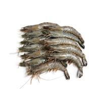 马来西亚活冻黑虎虾(31-35只\kg)400g