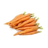 春播联盟农庄拇指萝卜500g