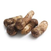香格里拉鲜松茸9-12cm500g