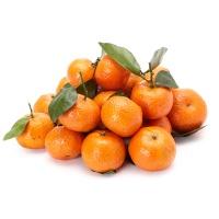 金秋砂糖橘500g装