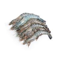 冷冻马来西亚老虎虾(21-25只\kg)400g