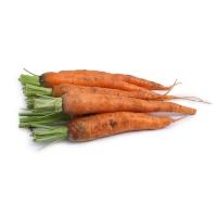 春播联盟农庄有机栽培胡萝卜400g