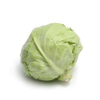 春播农庄有机栽培圆白菜400-600g