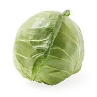 春播安心直采圆白菜500g