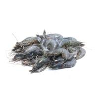 原装进口冻文莱蓝虾(61-70只/kg)800g