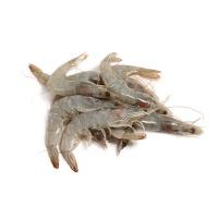 原装进口厄瓜多尔白对虾(50-60\kg)1kg