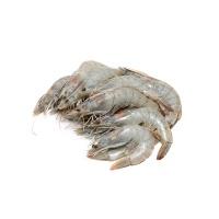 原装进口厄瓜多尔白对虾(30-40\kg)1kg