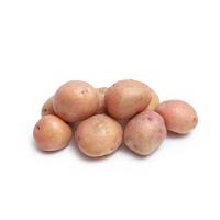 春播安心直采大理弥渡红皮小土豆500g