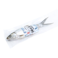 春播冰鲜水产马友鱼350-450g