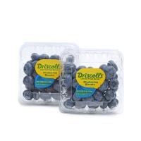 Driscolls蓝莓大果4盒(单果18-20mm)
