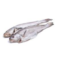冷冻舟山野生米鱼400g
