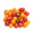 春播安心直采五彩小番茄450g
