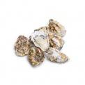 产地直采乳山牡蛎1号2000g(约28只)