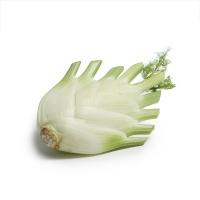 春播联盟农庄球茎茴香300g