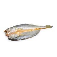 冷冻黄鱼鲞250g