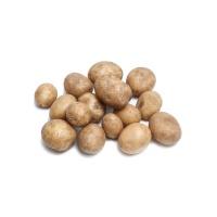 春播联盟农庄有机小土豆500g