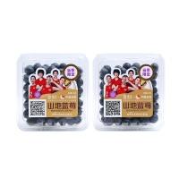 安心直采佳沃蓝莓4盒装(14mm+)