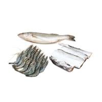东山岛活冻黑虎虾、带鱼、鲈鱼组合