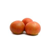 春播直采张家口京彩番茄450-500g