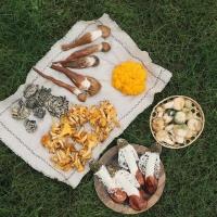 云南高原鲜菌盛宴礼包约1.1kg