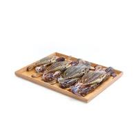 冰鲜水产青岛直采梭子蟹(6-8只)1000g