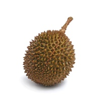 泰国整颗急冻托曼尼榴莲1粒装(2-3斤)