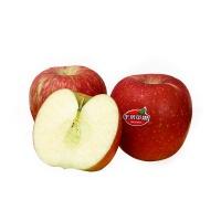 周鹏种植昭通冰糖脆苹果(果径80-85)